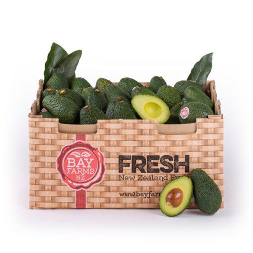 Box Of 62 Small Avocados